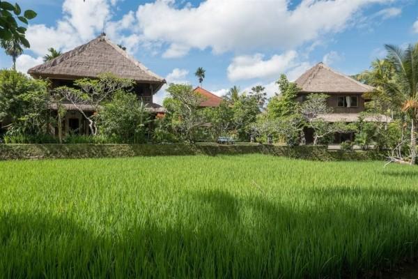 Autres - Combiné hôtels - Balnéaire au Maison At C Boutique 4* + Ananda Cottage 3* à Ubud Denpasar Bali