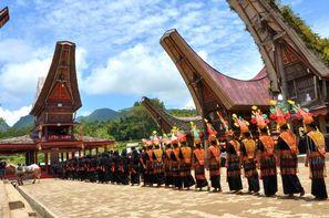 Vacances Denpasar: Combiné circuit et hôtel - De Bali aux Célèbes 3* + Sanur Paradise 4*