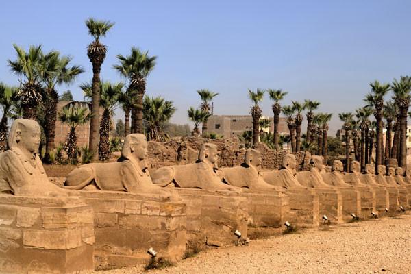 Monument - Hôtel Combiné séjour Radisson Blu Caire et Framissima Continental Hurghada 5* Le Caire Egypte
