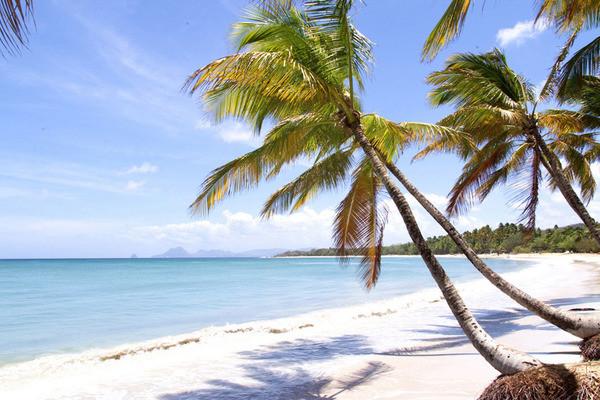 (fictif) - Combiné hôtels 2 îles - Guadeloupe et Martinique : Auberge de la Vieille Tour et Bakoua 4* Pointe A Pitre Guadeloupe