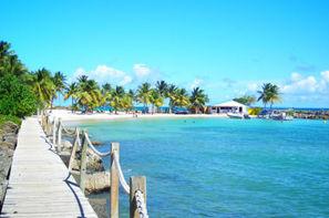 Vacances Pointe A Pitre: Combiné hôtels 2 îles: Guadeloupe et Martinique: Salako & Amyris