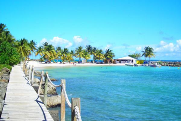 A renseigner - 2 îles: Guadeloupe et Martinique: Salako & Amyris