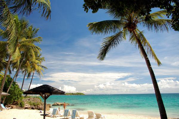 Nature - Combiné hôtels 2 iles : Auberge de la Vieille Tour + Bakoua 4* Pointe A Pitre Guadeloupe