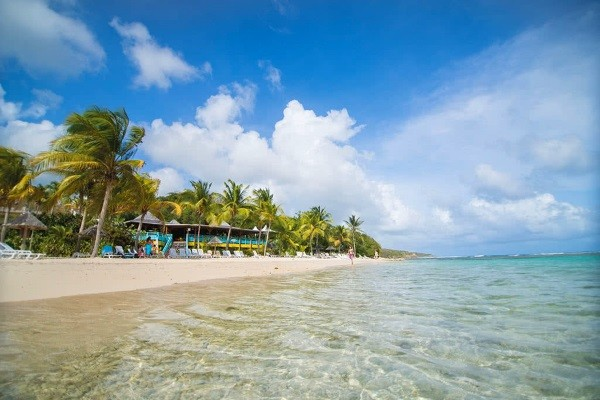 Plage - Combiné hôtels Pierre et Vacances : Guadeloupe et Martinique (studio 2 personnes) 3* Pointe A Pitre Guadeloupe