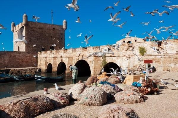 Ville - Combiné hôtels Combiné séjour De Essaouira à Marrakech : perle de l'Atlantique et ville rouge Marrakech Maroc