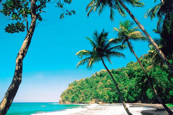Plage - Combiné croisière et hôtel Croisière Grenadines + séjour au Village Vacances Pierre & Vacances Sainte Luce 3* Fort De France Martinique