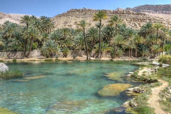 Nature - Combiné circuit et hôtel Oman & Bravo Club Salalah Mascate Oman