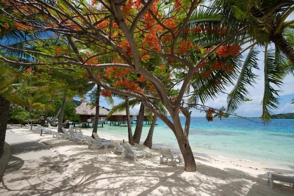 Plage - Combiné hôtels 3 Îles Maitai : Tahiti, Moorea, Bora Bora, Tahiti Papeete Polynesie Francaise