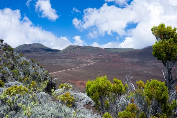 Nature - Combiné circuit et hôtel De La Réunion intense aux lagons de l'île Maurice 3* Saint Denis Reunion