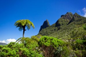 Reunion-Saint Denis, Autotour Découverte Réunion + Île Maurice à l'hôtel Le Palmiste