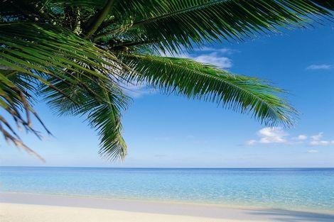 Sri Lanka-Combiné circuit et hôtel Circuit - Sri Lanka Authentique 3* + Maldives au Hanifaru Stay 3*