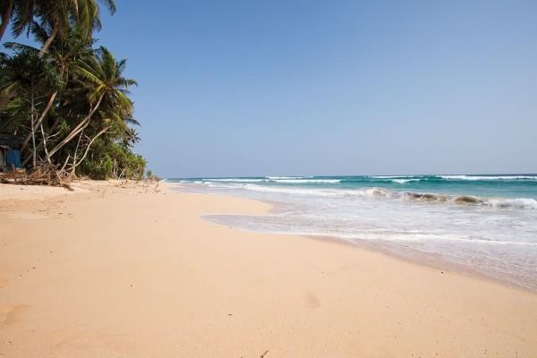 Plage - Combiné circuit et hôtel Découverte du Sri Lanka 4* & 5* extension à l'hôtel The Palms Colombo Sri Lanka