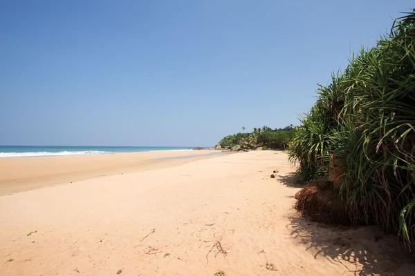 Plage sri lanka - L'Île Merveilleuse 4* & 5* extension à l'hôtel Maalu Maalu Resort