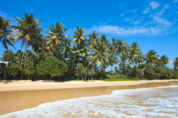 - Sri Lanka Authentique 3* et plage 4* - Sri Lanka Authentique 3* + Maldives au Biyadhoo