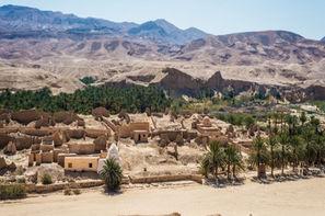Tunisie-Djerba, Combiné circuit et hôtel Combiné Splendeurs du Sud + Aladin