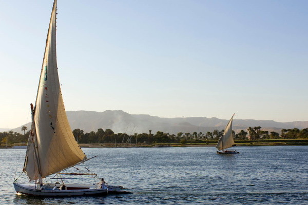 Coeur de l'Egypte