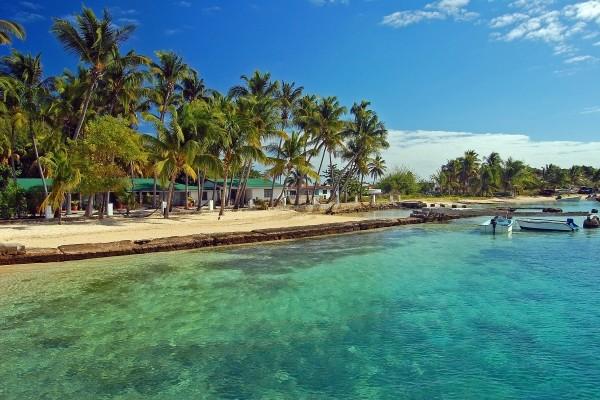 Nature - Croisière À la découverte des Grenadines Fort De France Martinique