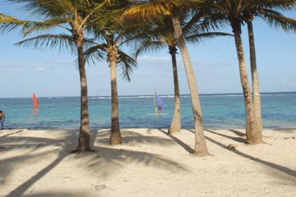 Plage - Croisière Dream Guadeloupe Pointe A Pitre Guadeloupe