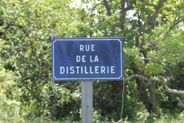 Ville - Croisière Dream Guadeloupe Pointe A Pitre Guadeloupe