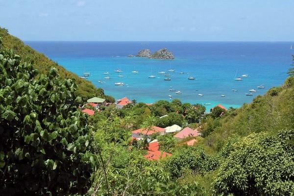 Nature - Croisière Dream : Îles Vierges Saint Martin Saint Martin