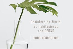 Espagne-Seville, Hôtel Aacr Monteolivos Hotel
