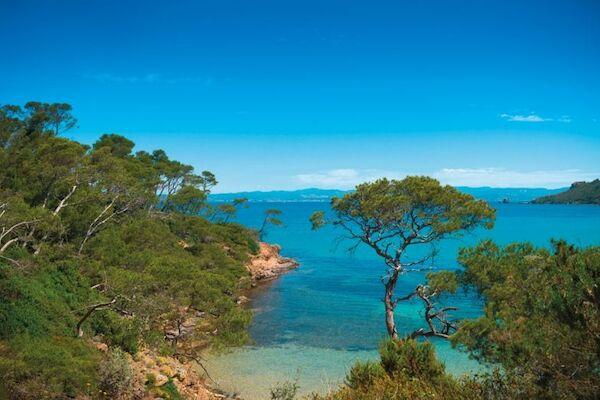 null - Le Pansard Hyères France Provence-Cote d Azur