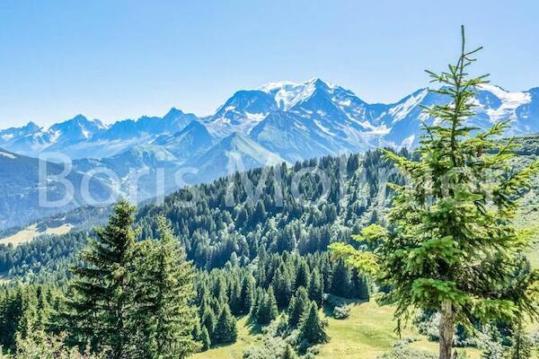 null - Carlines Saint Gervais Mont Blanc France Alpes