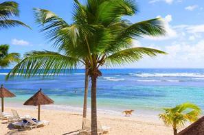 Guadeloupe-Pointe A Pitre, Hôtel Pierre & Vacances Premium Les Tamarins
