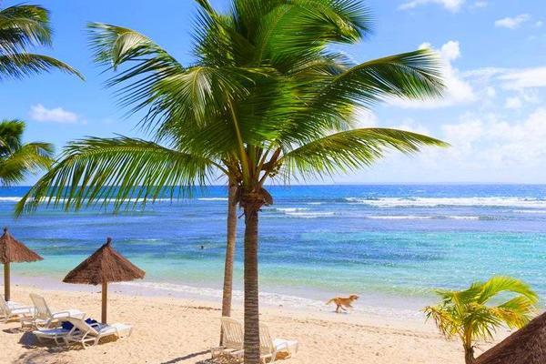 Autres - Pierre & Vacances Premium Les Tamarins 4* Pointe A Pitre Guadeloupe