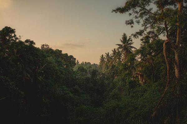 Facade - B Saya Villa 3* Denpasar Bali