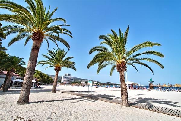 Plage - Globales Mimosa Hotel 3* Majorque (palma) Baleares