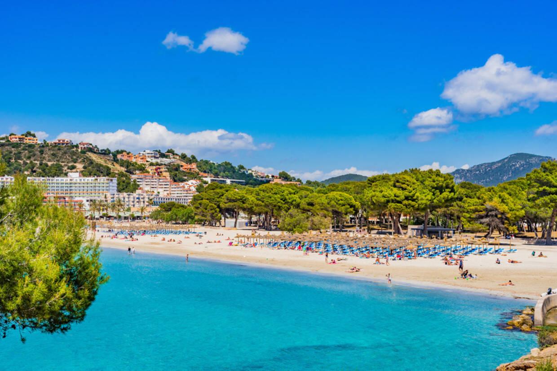 Plage - Hôtel Globales Playa Santa Ponsa 3* Majorque (palma) Baleares