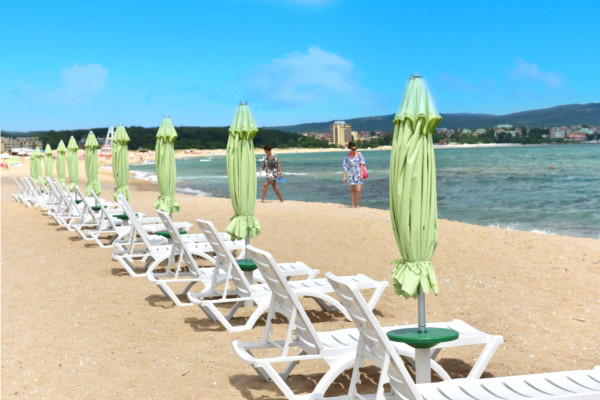 plage - Forest Beach