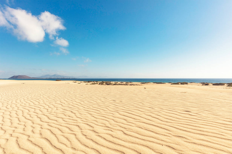Plage - Hôtel Atlantic Garden Beachmate 3* Fuerteventura Canaries