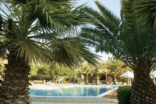 Piscine - Hôtel Elounda Palm 3* Heraklion Crète
