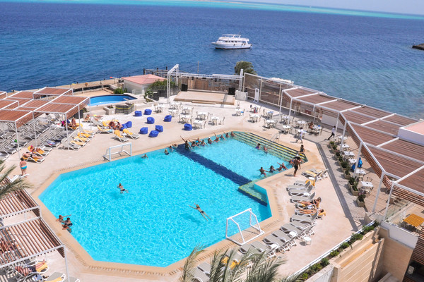 Piscine - Hôtel Adult Only Sunrise Holidays Resort 5* Hurghada Egypte