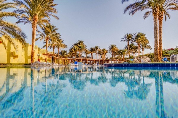 Piscine - Hôtel Palm Beach Resort 4* Hurghada Egypte