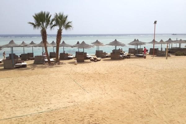 Plage - Hôtel Blue Reef Resort 4* Marsa Alam Egypte