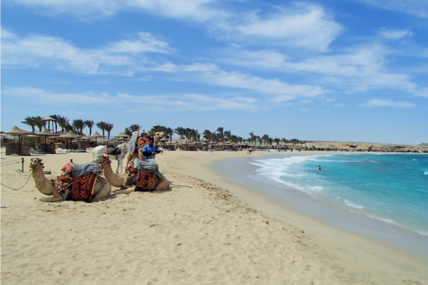 Plage - Hôtel El Malikia Resort Abu Dabbab 5* Marsa Alam Egypte