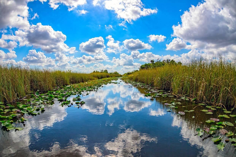 Nature - Séjour Découverte de Miami 3* Miami Etats-Unis