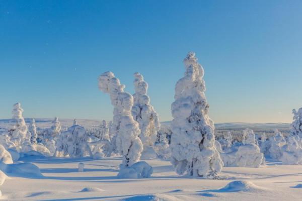 (fictif) - Hôtel Séjour activités à l'hôtel Samperin Savotta 3* Kittila Finlande