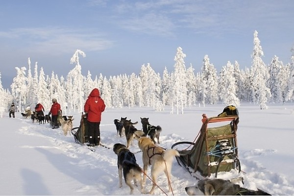 Nature - Club Jet Tours Yllas Saaga 4* Kittila Finlande
