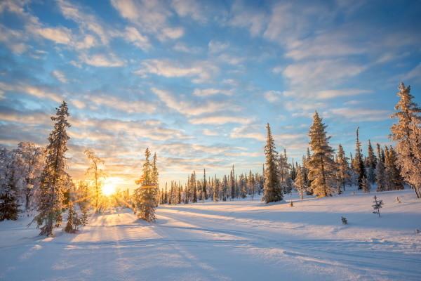 Nature - Hôtel Séjour activités Explorateur fêtes de fin d'année à l'hôtel Yllas Lake 3* Kittila Finlande