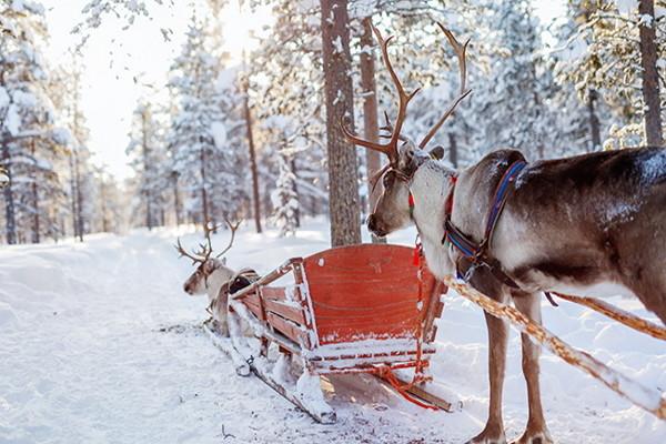 Nature - Hôtel Séjour Réveillons à l'hôtel Olos 4* Kittila Finlande