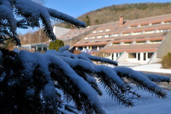 Séjour Alsace / Lorraine - Village Vacances Le Mongade