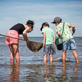 Pêche à pieds - Framissima Bretagne Kerjouanno