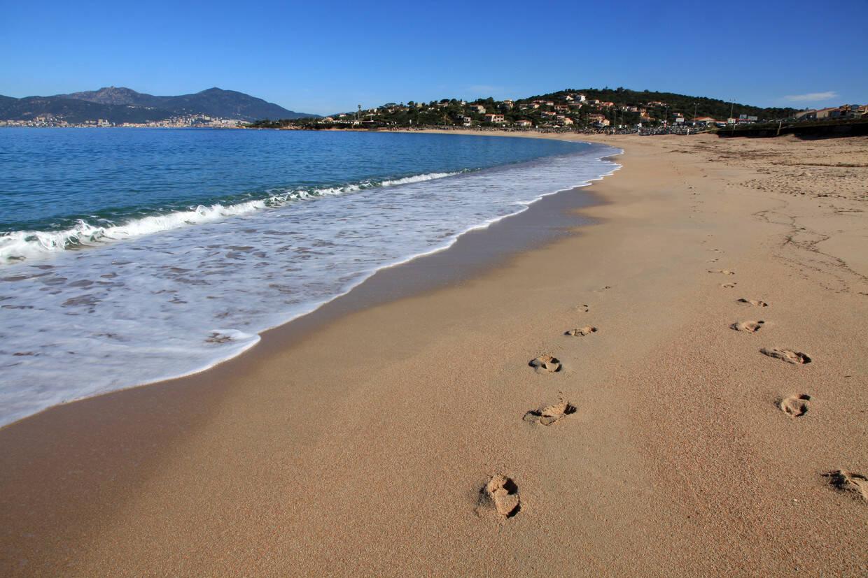 Plage - Hôtel Radisson Blu Resort & Spa Ajaccio Bay (sans transport) 4* Ajaccio France Corse