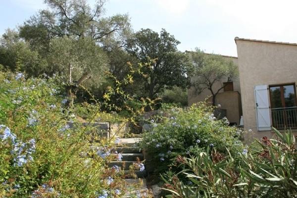 Facade - Résidence locative L'Olivella (sans transport) Calvi France Corse