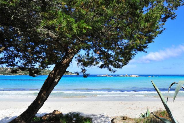 France Corse : Club Fram Bien-être & Nature Corse Santa Giulia (vol inclus)