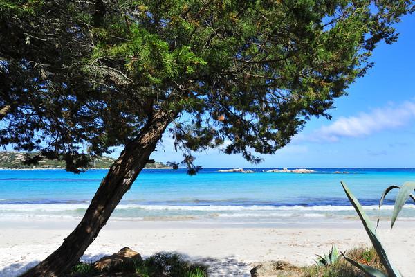 Plage - Résidence hôtelière Fram Bien-être & Nature Corse Santa Giulia (vol inclus) 3* Figari France Corse